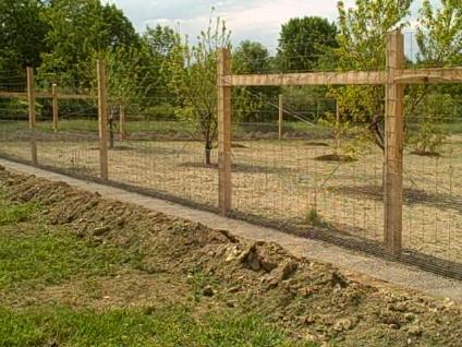... Garden Fence B ...